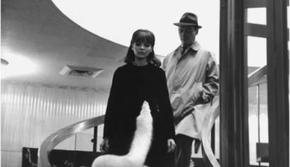 Szenenphoto: Alphaville - Une etrange aventure de Lemmy Caution, Frankreich, Italien 1965.  Alle Rechte vorbehalten