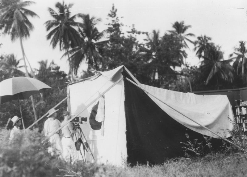 Black and white phote: cinematographer films into a tent, palm trees in the background