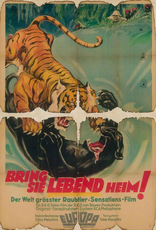 Historisches Filmplakat mit zwei kämpfenden Raubkatzen