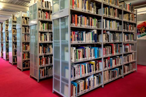 Book shelves in the library standing on red carpet.