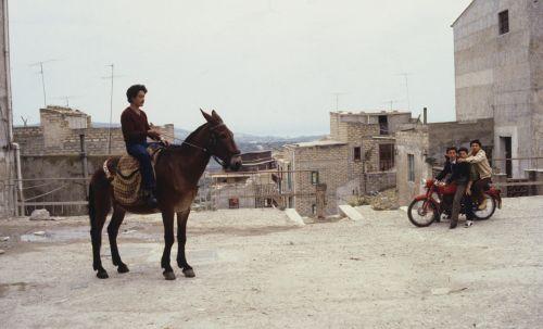 Links im Vordergrund sitzt ein junger Mann auf einem Esel, rechts sitzen drei Jungendliche auf einem Moped. Im Hintergrund sieht man über die Dächer einer italienischen Stadt bis zum Horizont.